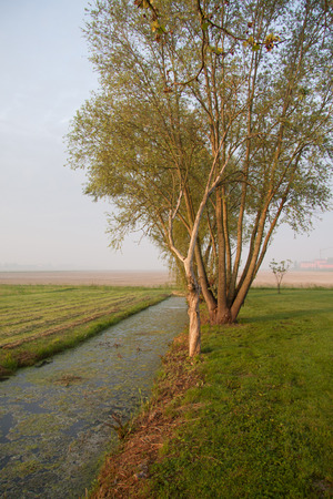 the po valley: irrigation canal in the Venetian plain Stock Photo