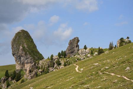 Pieralongia, Seiser Cisles  Val Gardena