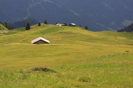 pastures at Alpe di Cisles - Val Gardena