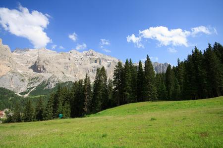 sella: meadows in Val Gardena  Background the Sella