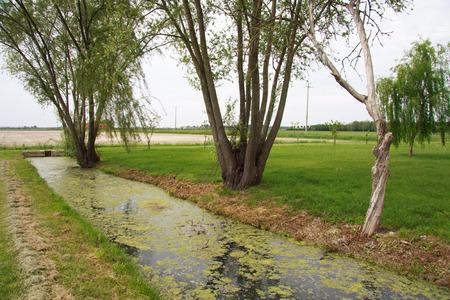 veneto: Veneto countryside