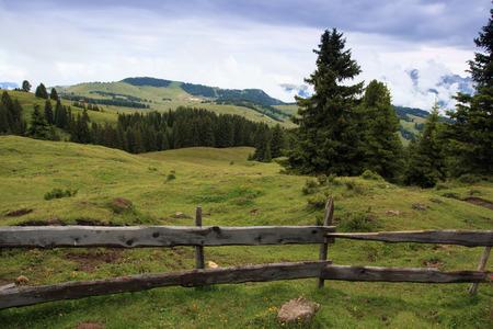 tyrol: Alpe di Siusi (South Tyrol)