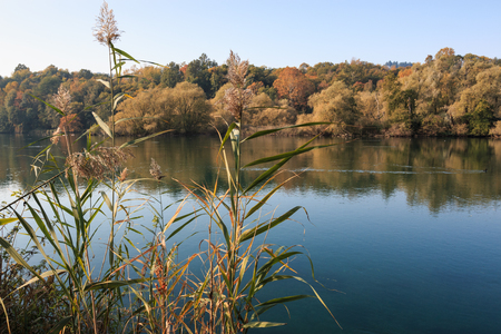 rivière adda - oasis d'albone Banque d'images