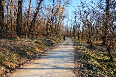 bicycle and pedestrian path in the Lura park - Lomazzo (Como)