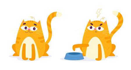 Cuty cats vector hand drawn illustration, two cats have one plate. Children vector design illustration. Illusztráció