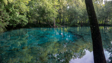 Beautiful view of the turquoise crystal clear waters of a lagoon of Ginnie Springs