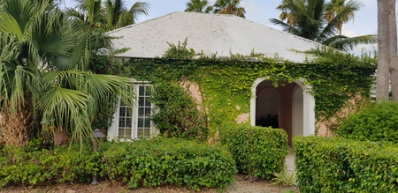 Beautiful house gate tunnel cover by tropical and exotic plants and ivy in Nassau, Bahamas