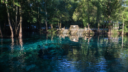 Wooden staircase going down in the turquoise water in a lagoon of Ginnie Springs. Cypress forest in Santa Fe river in the morning light