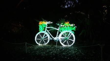 Bycicle decorated with fairy christmas lights isolated at black night with beautiful flowers and plants in the basket