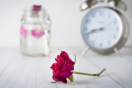 the passing of time: Dry red rose flower with a large vintage clock at the background. Short Depth of field.  Concept image representing passing time and old age or death Stock Photo