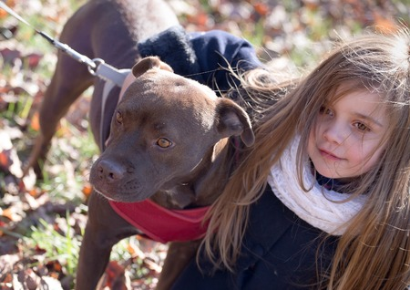 hugged: a brown dog on a leash with pink collar being hugged by a little girl on a chilly autumn day, great concept image - children caring for pets