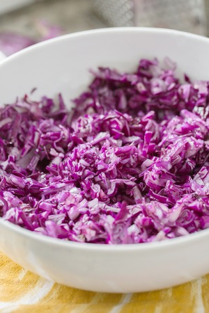 red cabbage shredded in white bowl