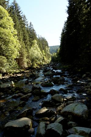 石の川 写真素材