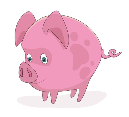Piggy pig cartoon  illustration Vector