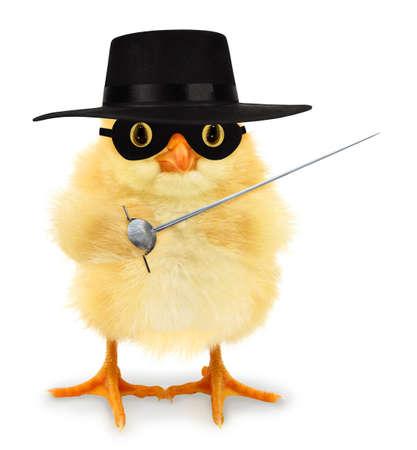 Cute cool chick Zorro masked swordsman vigilante with sword rapier funny conceptual image