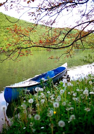 peacefulness: A canoe close to the river bank, full of dandelions