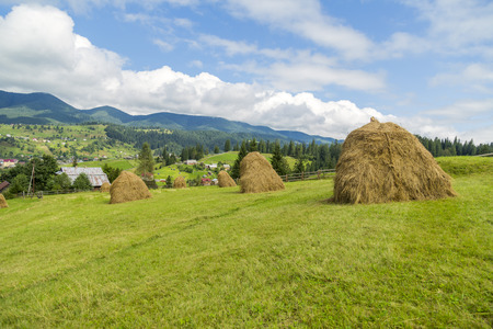 vorohta: Nature Vorohta village in the Carpathian Mountains