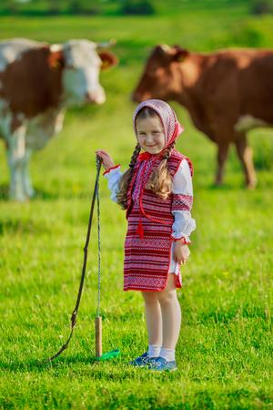 tending: little girl tending cows on pasture
