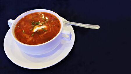 Traditional Ukrainian, Russian, Polish national soup, vegetable borsch on the white bowl. Dark background.