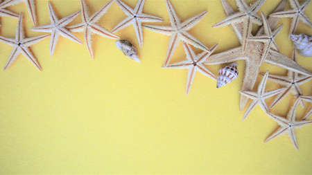 Seashells and starfish on yellow background. flat lay. copy space Vacation holiday concept. Summer background 版權商用圖片