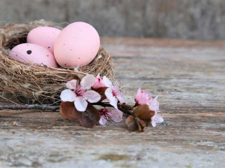 Easter eggs in nest and pink flowering sakura branches on rustic background. Happy Easter holiday. Copy space
