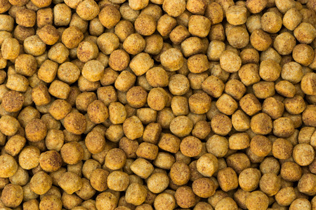 dog food: Dog Food Stock Photo