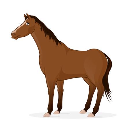 Horse cartoon illustration Illustration