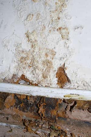 lekken: schimmel op de muur veroorzaakt door waterlek onder de vloer Stockfoto