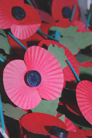 world war ii: image of red poppies commemorating world war