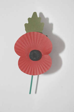 image of red poppy on white background, commemorating world war photo