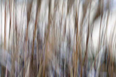 art abstract: Background. Abstraction. Blurred lines. Vertical panning.Toning.