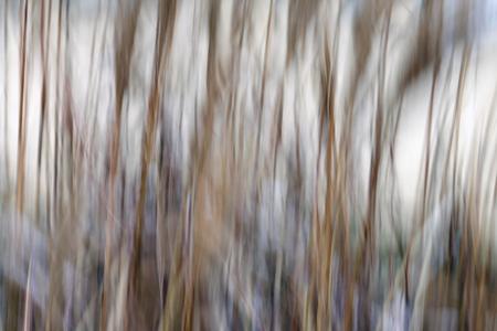arte abstracto: Fondo. Abstracción. Líneas borrosas. Panning.Toning Vertical.