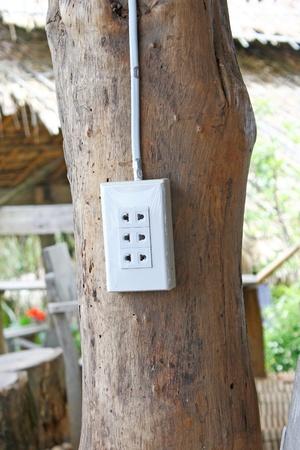 The plug photo