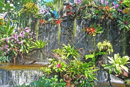 waterfall in the garden Stock Photo - 11780355