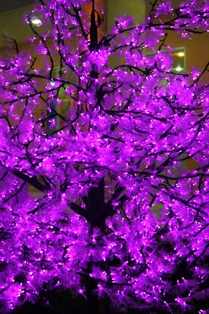 violet LED light photo