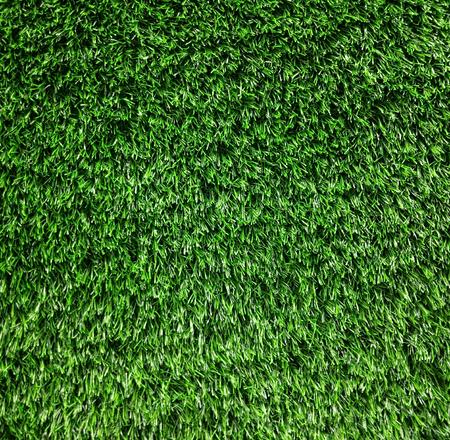 Green grass texture from a sport field