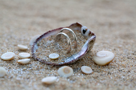 Wedding rings in sea shell on the coral beach photo