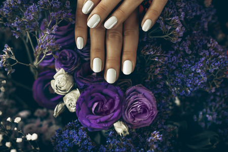 woman hands with manicure on roses on background Reklamní fotografie