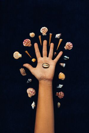 woman hand and different sea shells on black background conceptual design photo
