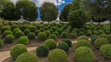real renaissance: Garden next to the Amboise castle.