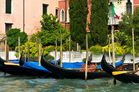 venice: Venice.