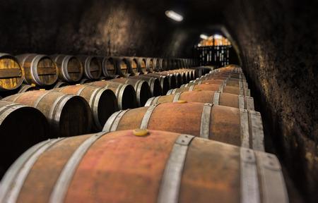 cellar: Wine cellar. Stock Photo