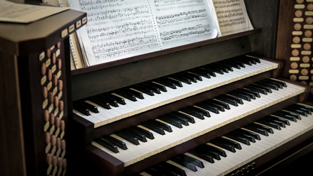 organ: Organ.