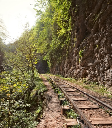 narrowgauge: Narrow-gauge railway in Guam gorge.