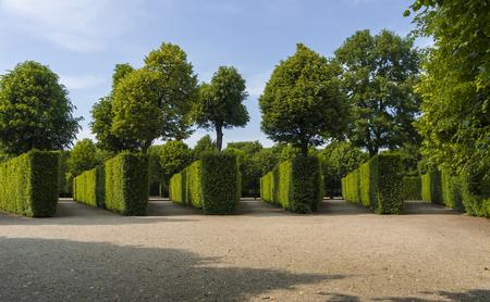 Garden next to Schönbrunn Palace. Vienna.