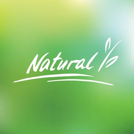 Handwritten vector logo. Natural. Plant. Green blurred background Vettoriali