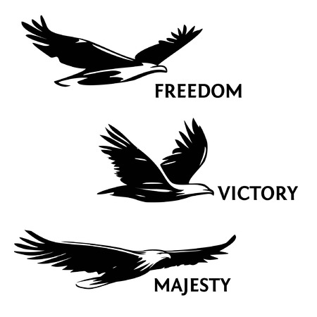 Set of eagles, painted with a brush. Silhouettes of birds of prey soaring in the sky. The symbol of greatness, victory and freedom.