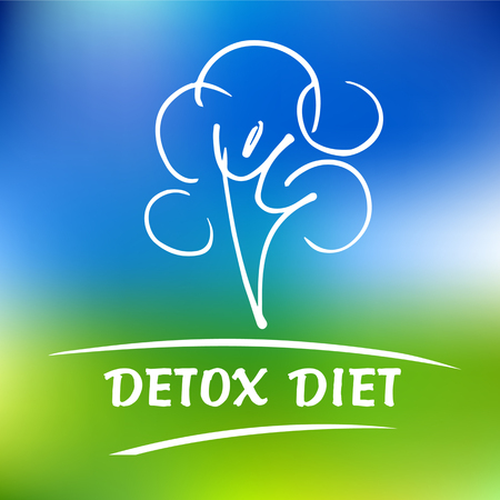 holistic health: Vector detox diet and holistic nutrition on color background. Hand drawn line for fresh health food and drinks in menu cafe, restaurant.
