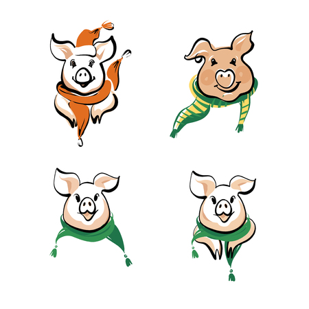 objects: Sketch vector illustration. Set of head, face pig in scarf. Symbol of 2019 chinese moon happy new year. Illustration