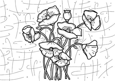 Poppies Vector. Drawing line art style. Coloring for adults.